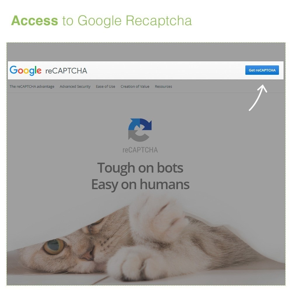 module - Security & Access - re Captcha on Register and Contact Form - Anti Spam - 2