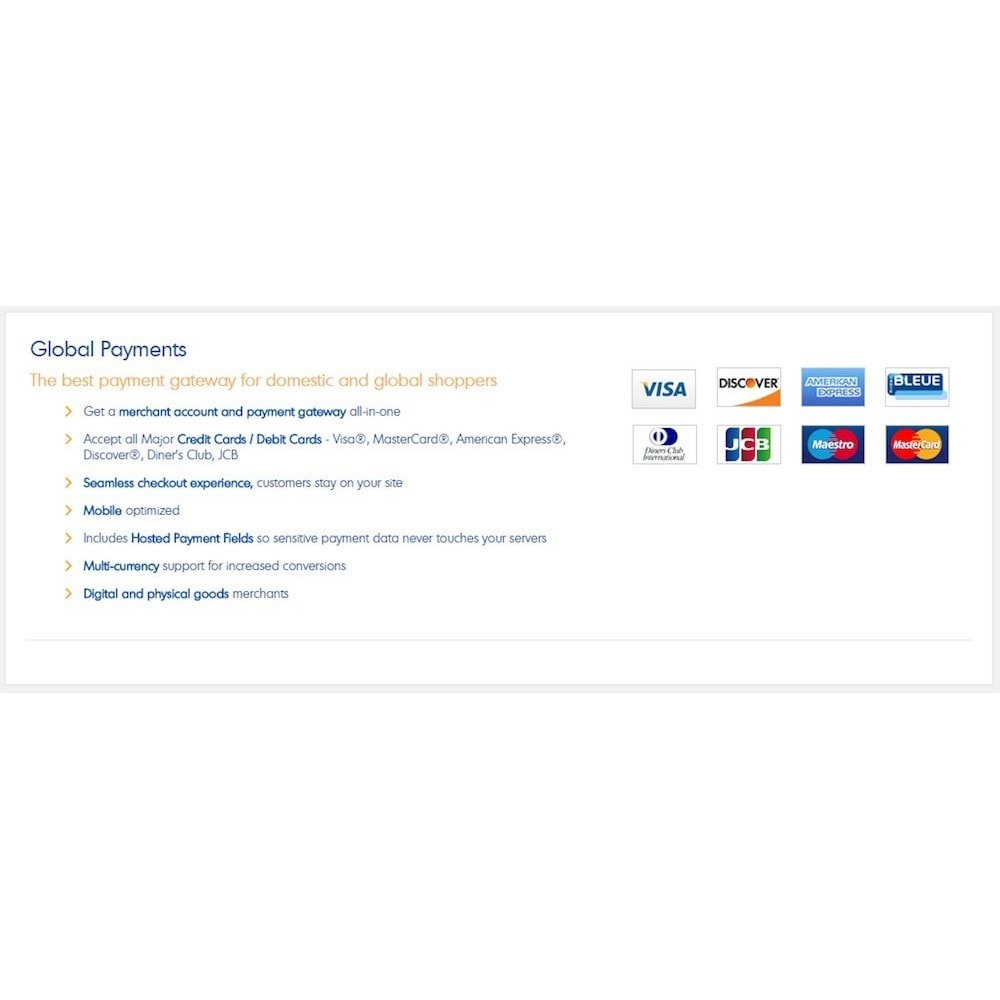 module - Payment by Card or Wallet - BlueSnap All-in-one Global Payment Solution - 2