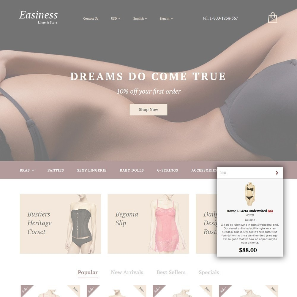 theme - Mode & Chaussures - Easiness - Lingerie Store - 5