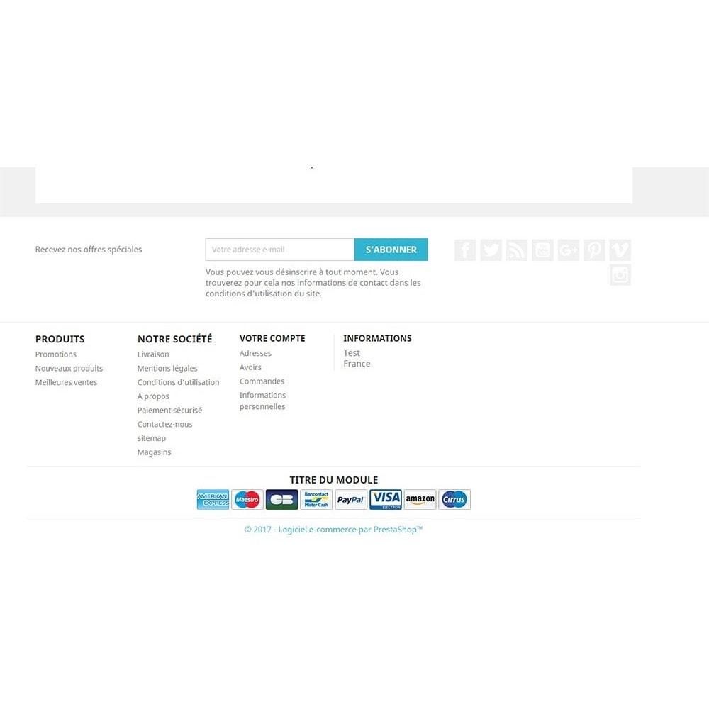module - Odznaki & Logo - Payment logo footer - 3