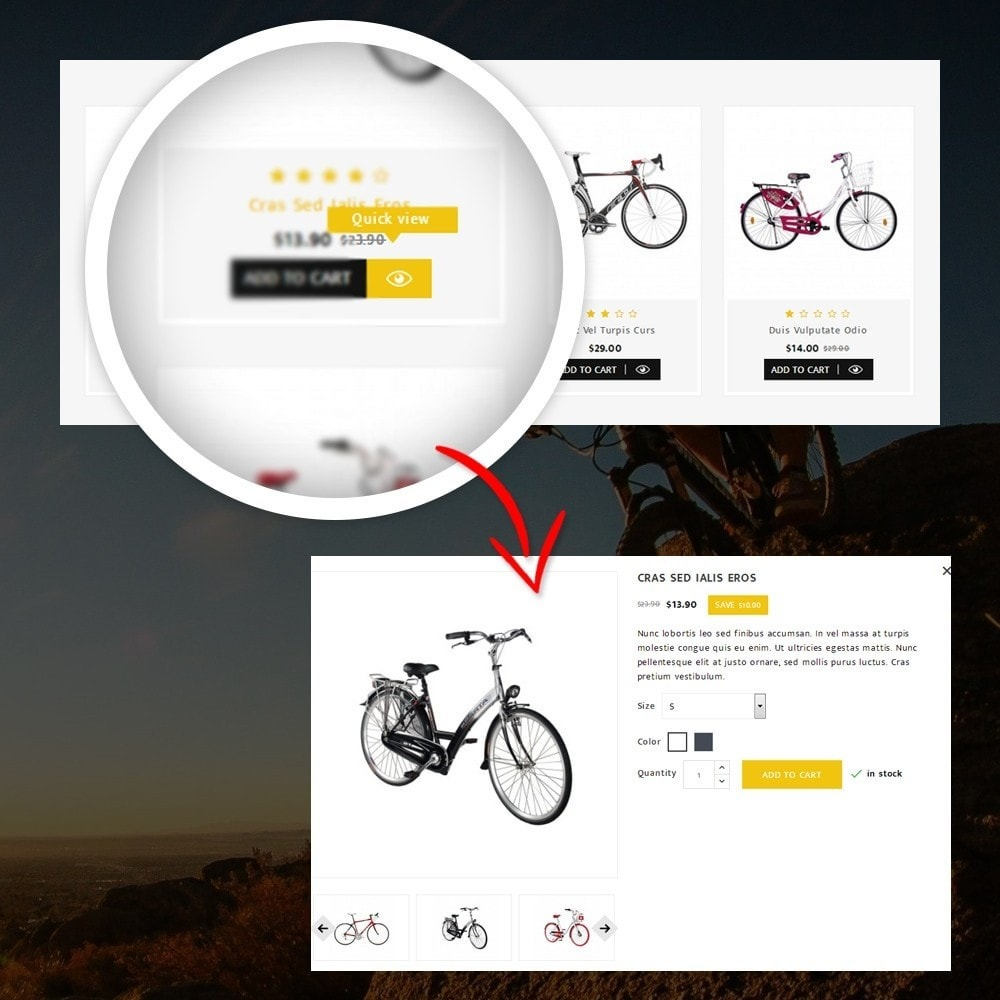 theme - Sport, Loisirs & Voyage - Sneaps - The Bicycle Store - 8