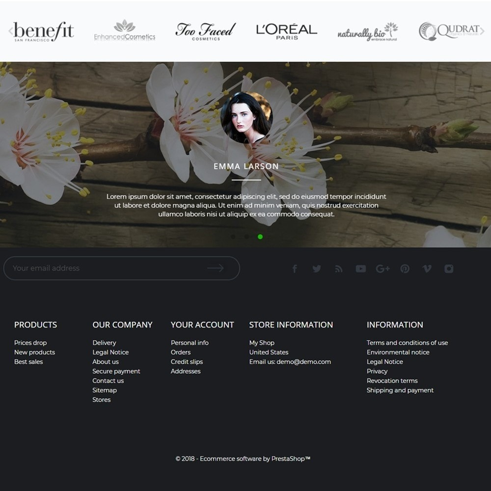 theme - Health & Beauty - Fancy Cosmetics - 4