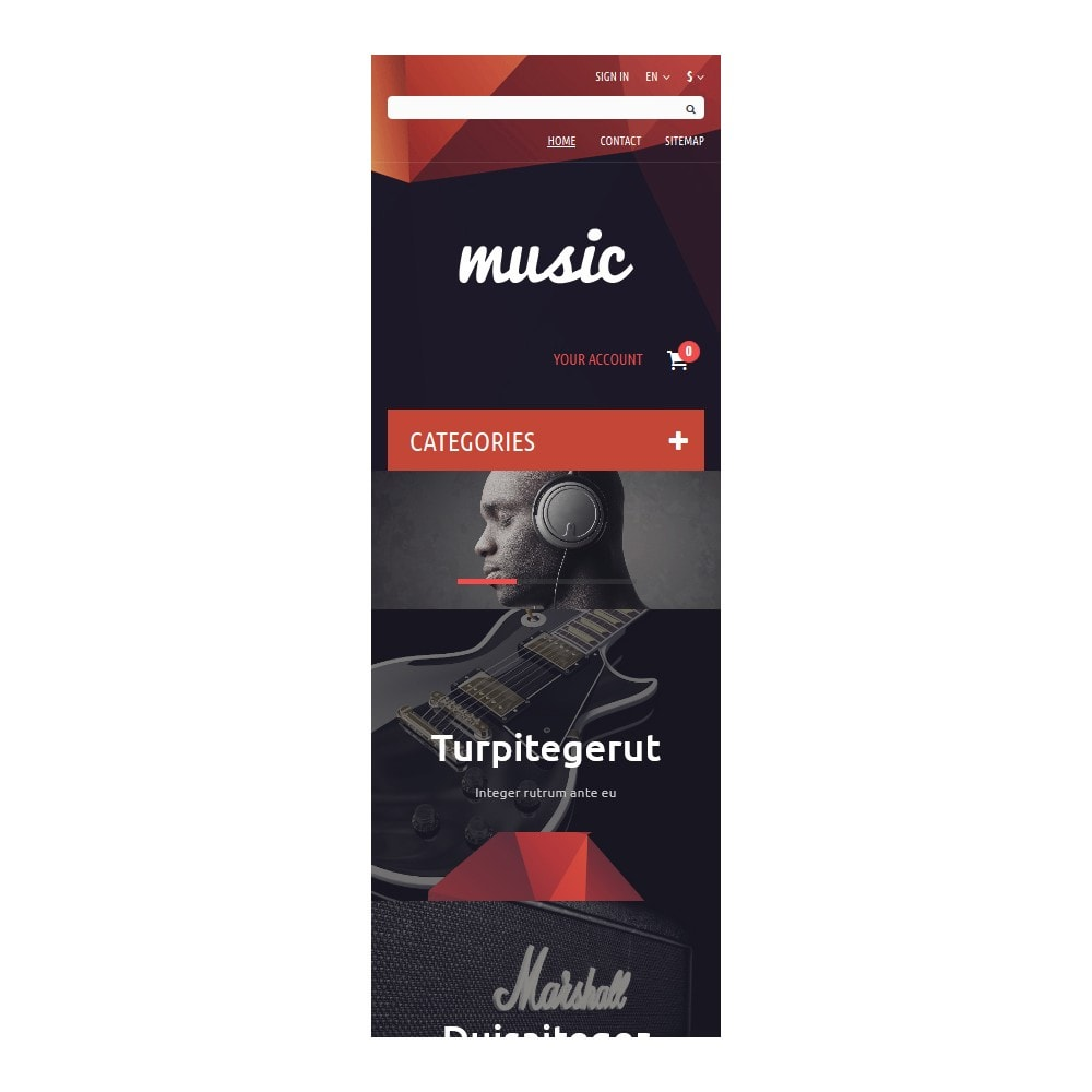 theme - Kunst & Cultuur - Music Store - 9