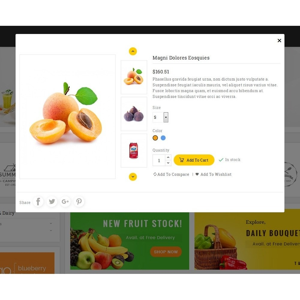 theme - Lebensmittel & Restaurants - Big Basket Mega Grocery - 9