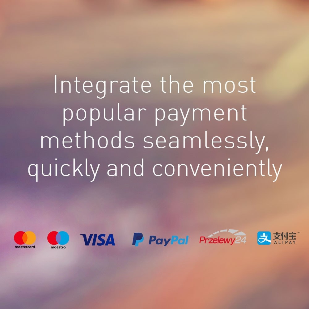 module - Payment by Card or Wallet - Wirecard - 1