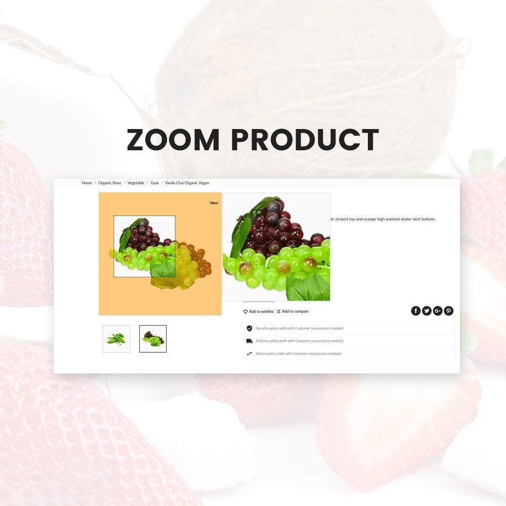 theme - Food & Restaurant - Organic Fresh–Food Grocery–Market Store - 7