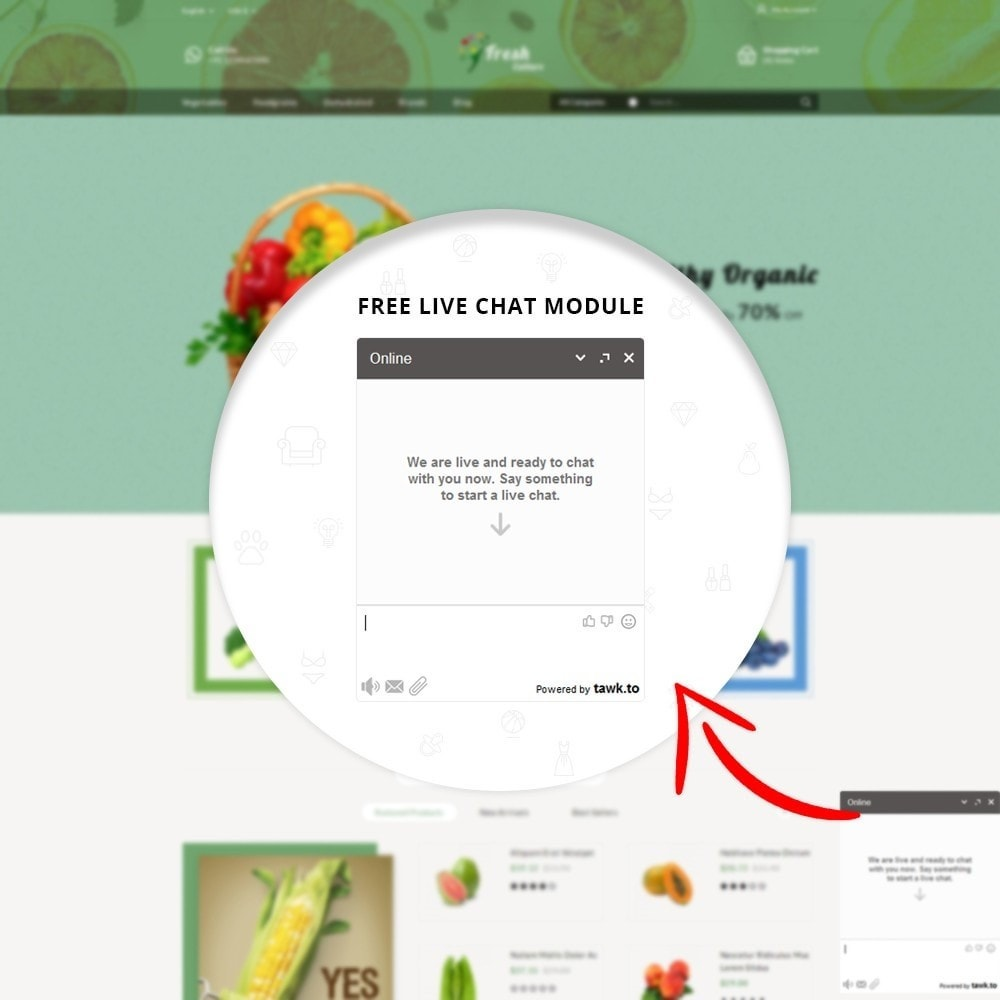 theme - Food & Restaurant - Fresh Culture Organic Store - 11