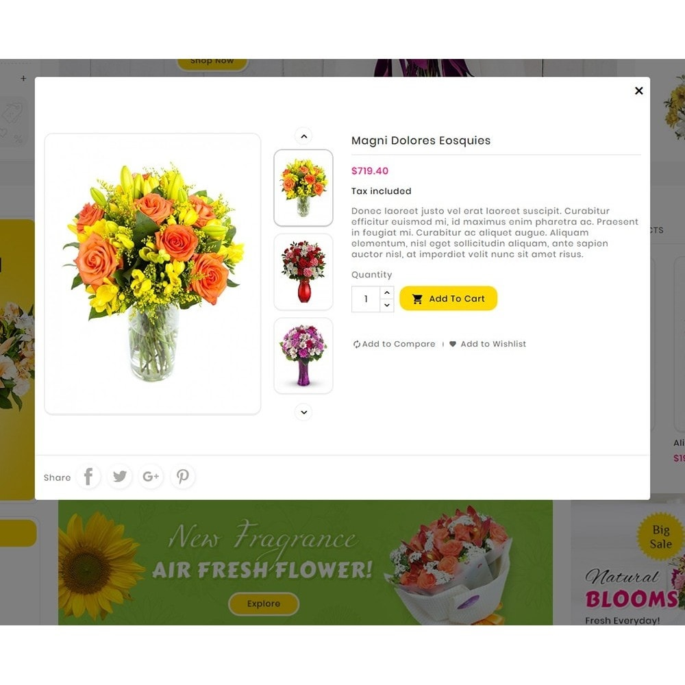 theme - Gifts, Flowers & Celebrations - Mega Deals Flower Art - 9