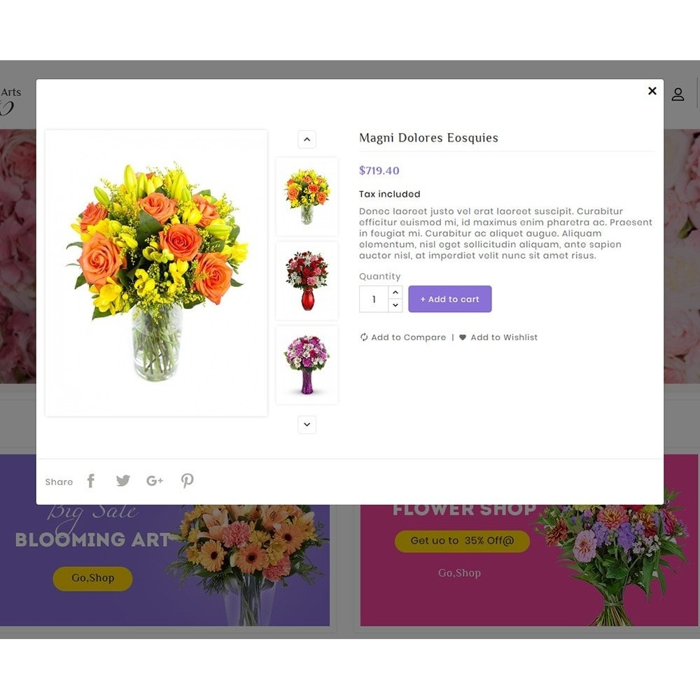theme - Gifts, Flowers & Celebrations - Flowers & Blooming Arts - 9