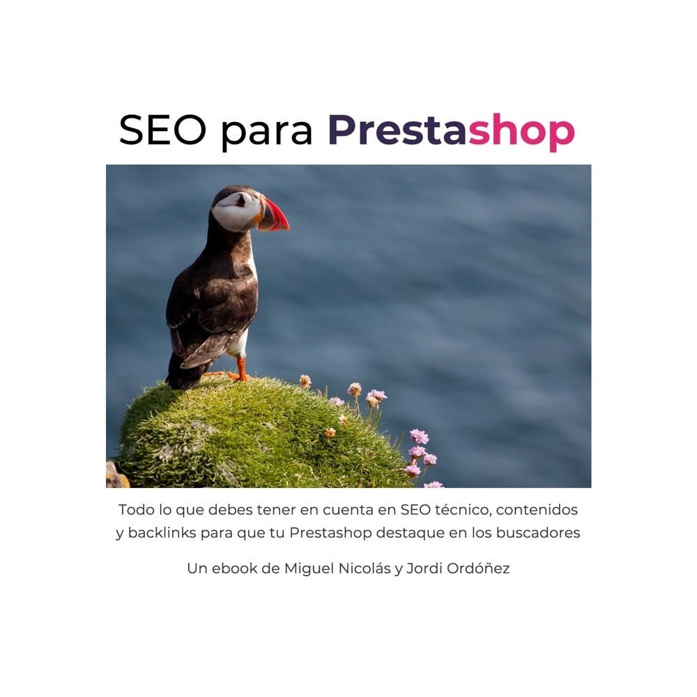 other - SEO - Ebook: Prestashop SEO guide - 1