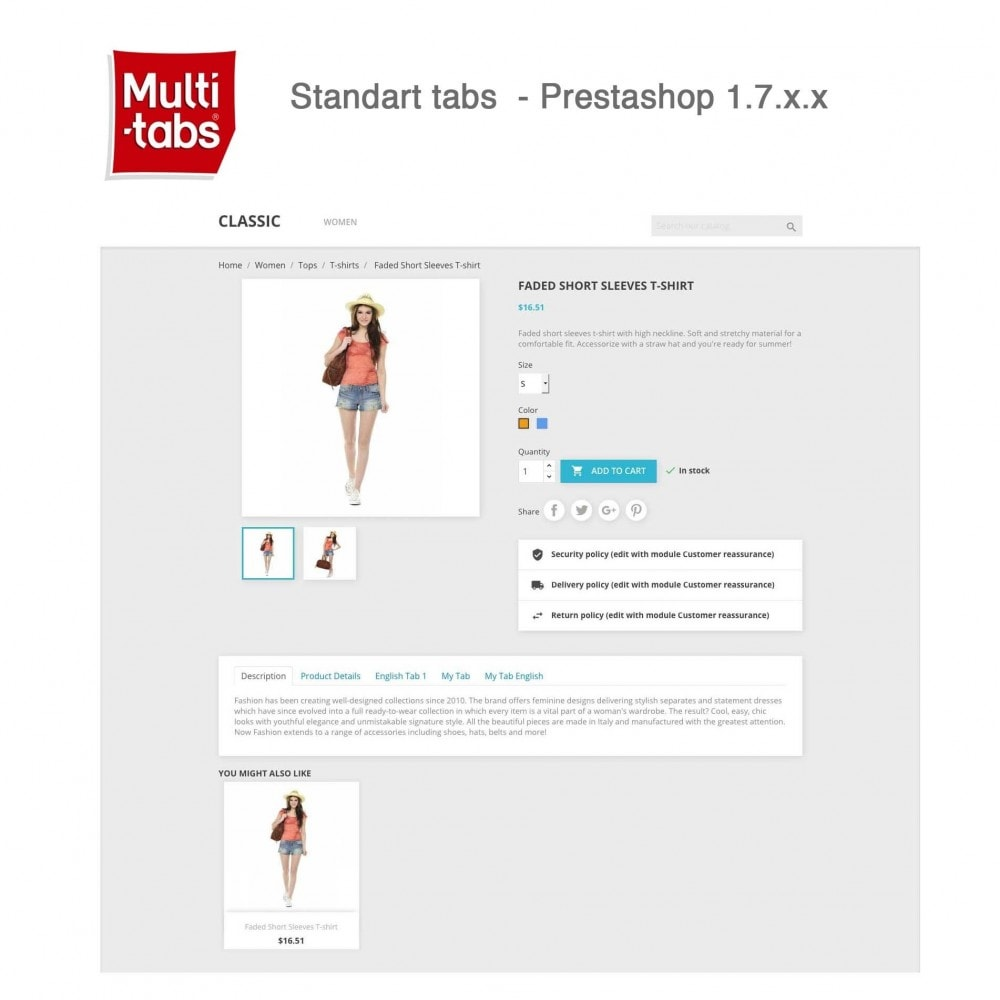 module - Internationaal & Lokalisatie - Product Tabs (Multi-Language, Responsive, 12 styles) - 11