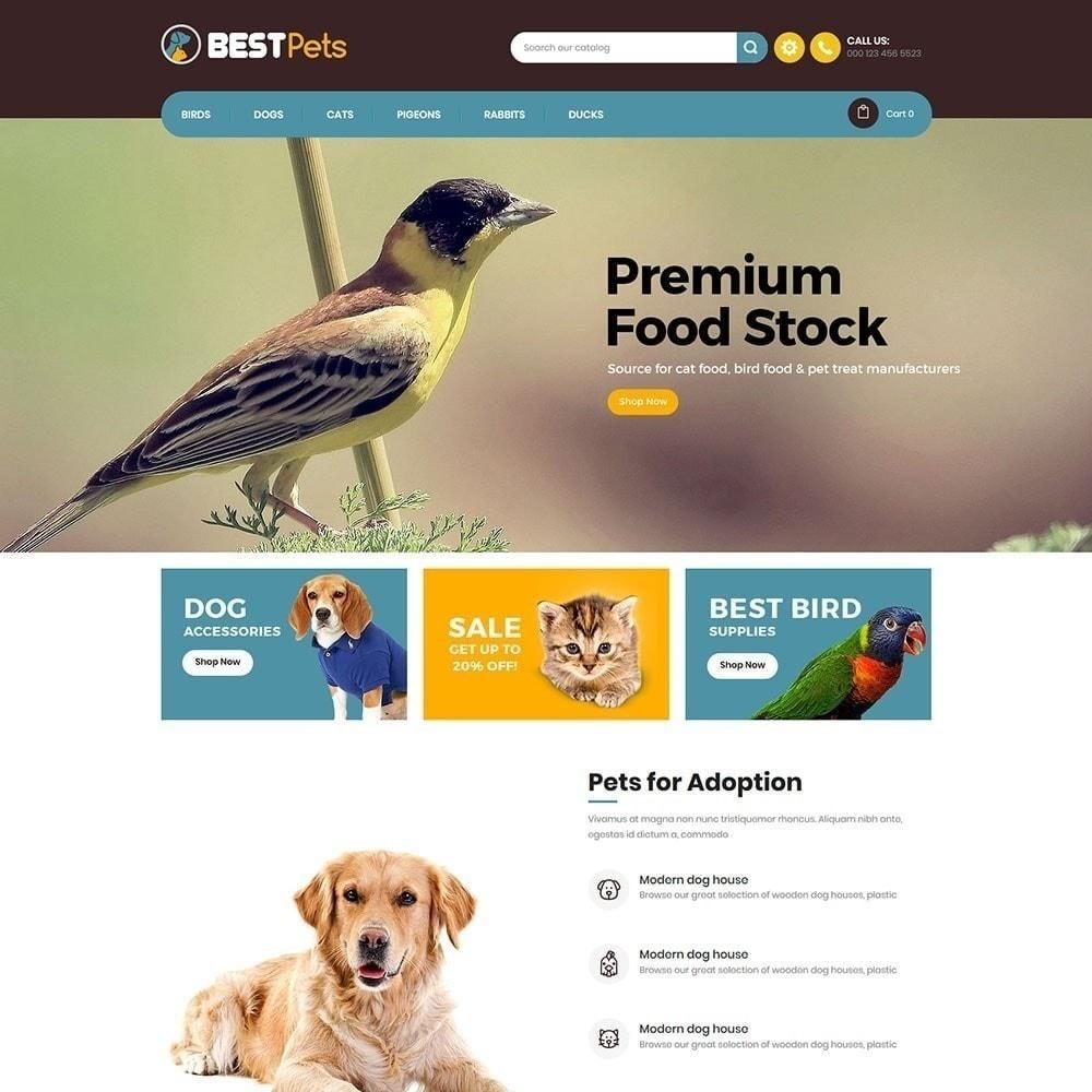 theme - Animaux - Bestpet Pet Store - 3