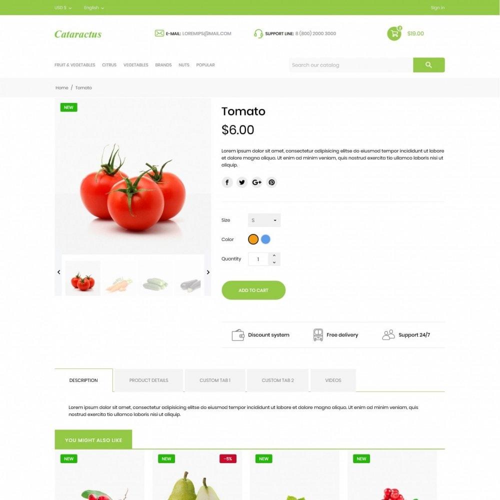 theme - Food & Restaurant - Cataractus - 6