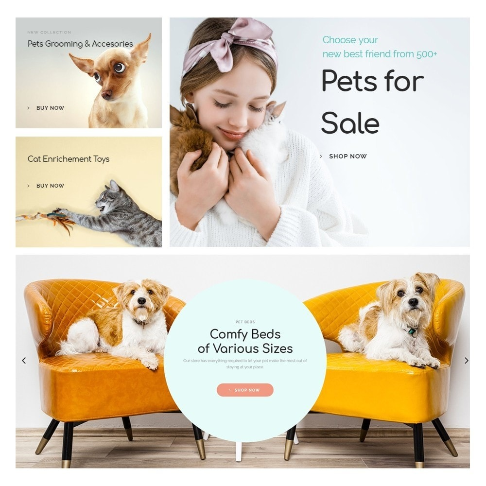 theme - Animals & Pets - Eveprest - Pets Store - 7