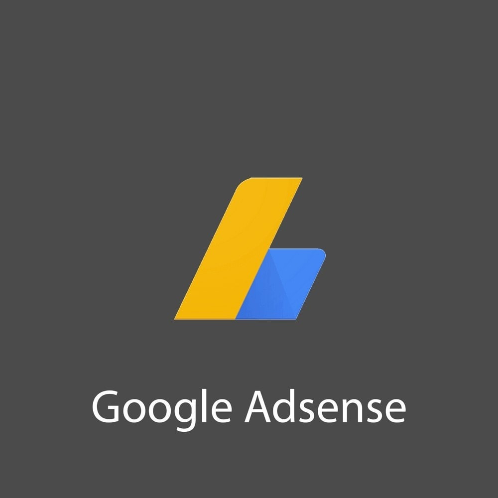 module - SEA SEM (paid advertising) & Affiliation Platforms - Google Adsense Ads - 1