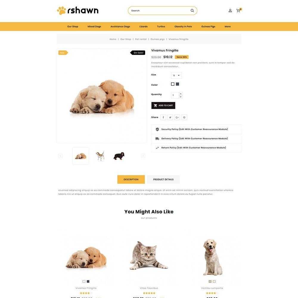 theme - Animali - Rshawn - The Pet Shop - 6