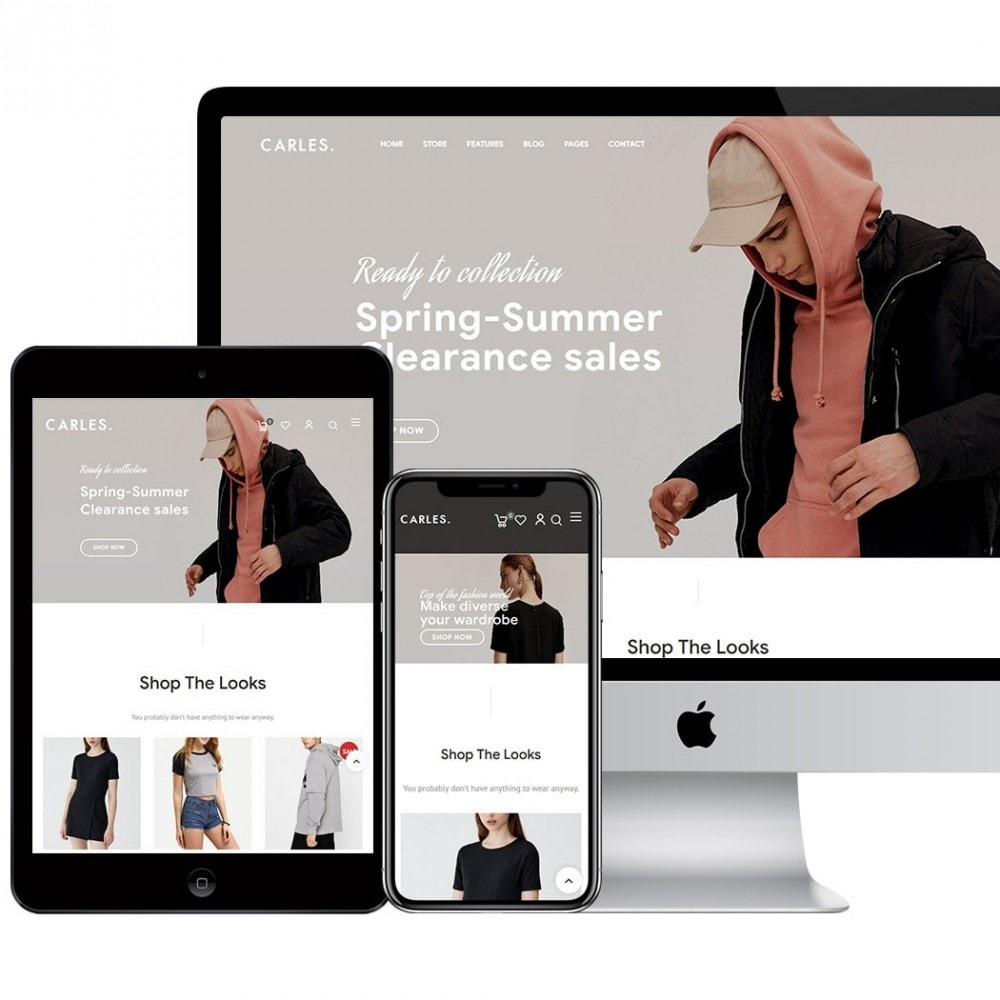 theme - Fashion & Shoes - Carles - Modern Fashion Theme - 2