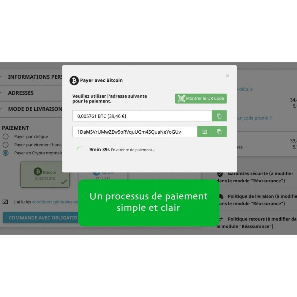 module - Autres moyens de paiement - Bitcoin x Crypto - Accepter les bitcoins et cryptos - 2
