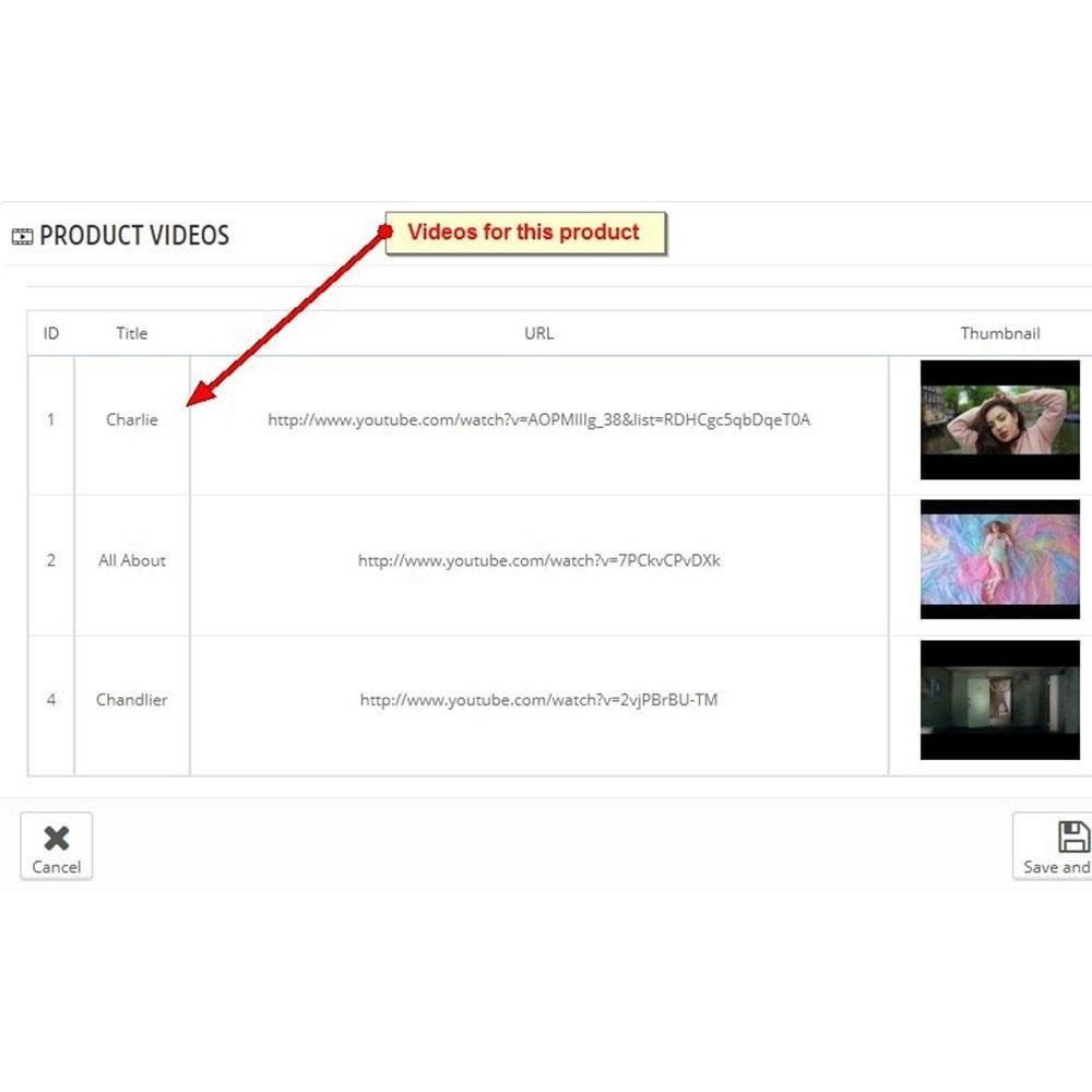 module - Wideo & Muzyka - Filmy produktów Youtube - 3