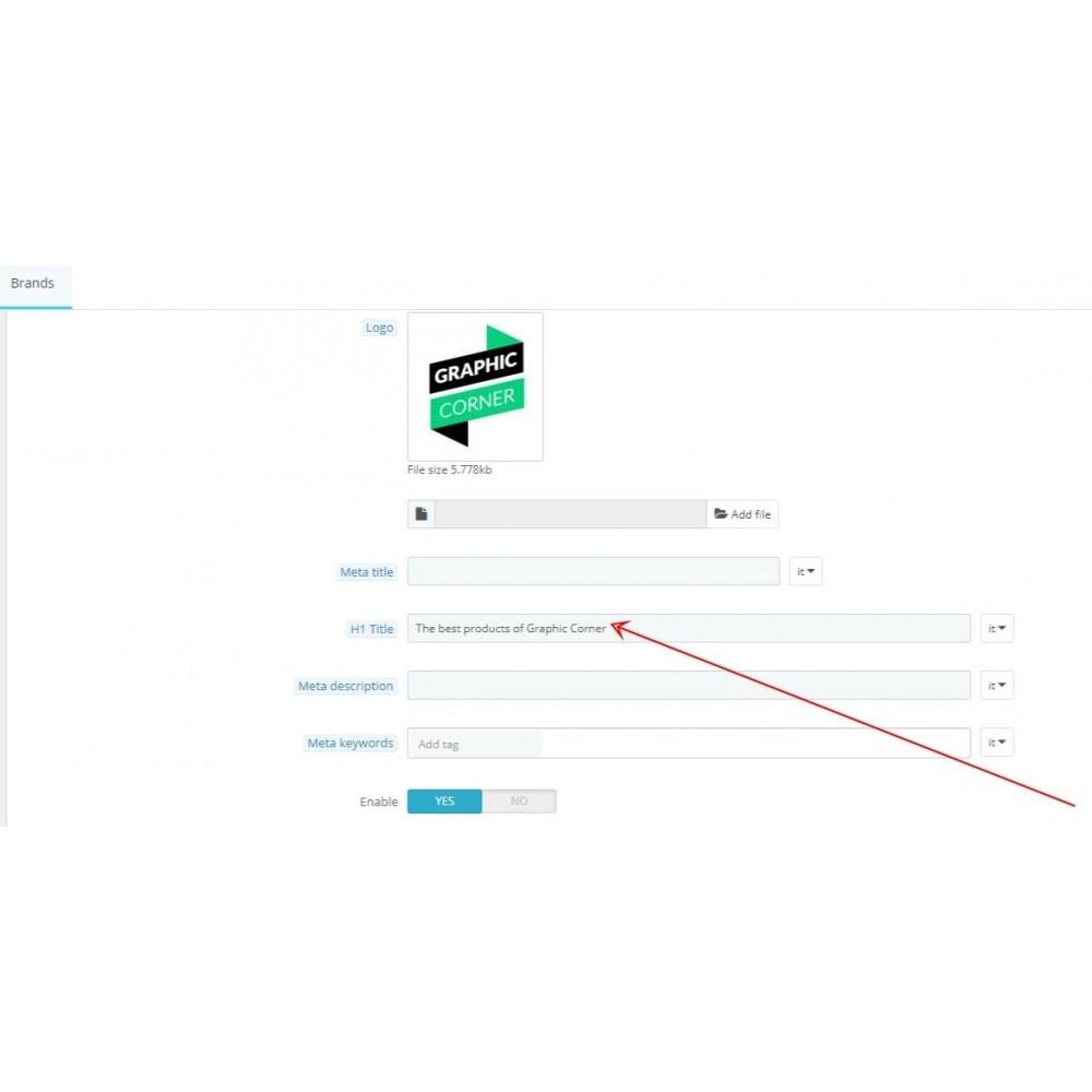 module - SEO (Indicizzazione naturale) - SEO titolo H1 in pagine brand - 2