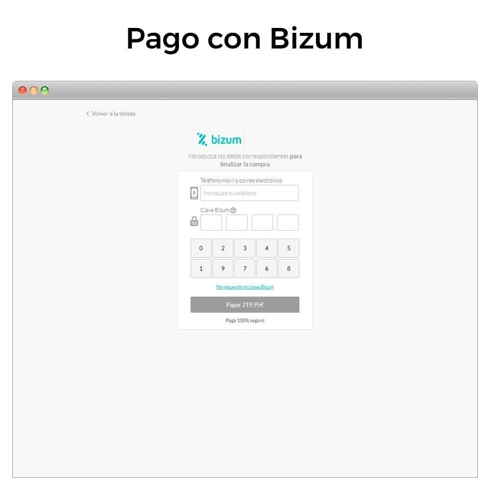 module - Pago con Tarjeta o Carteras digitales - Bizum - Pago con el móvil - 3