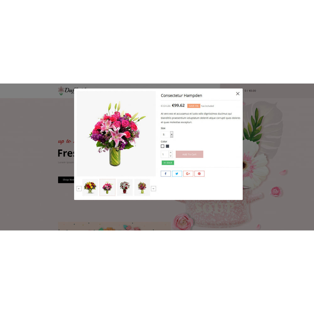 theme - Gifts, Flowers & Celebrations - Daffodils - Flowers Store - 6