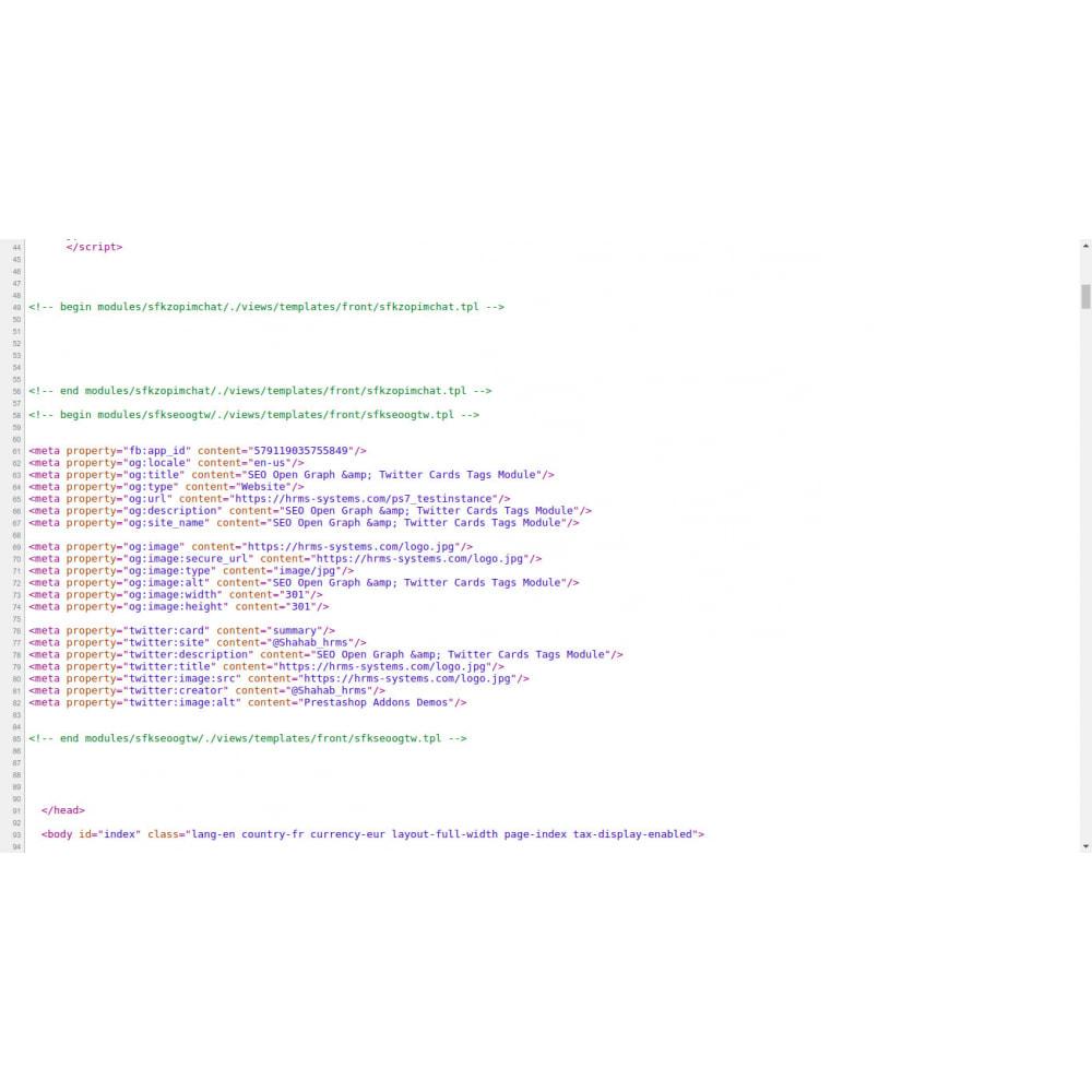module - SEO (Indicizzazione naturale) - Generatore di tag SEO Open Graph e Twitter Card - 2