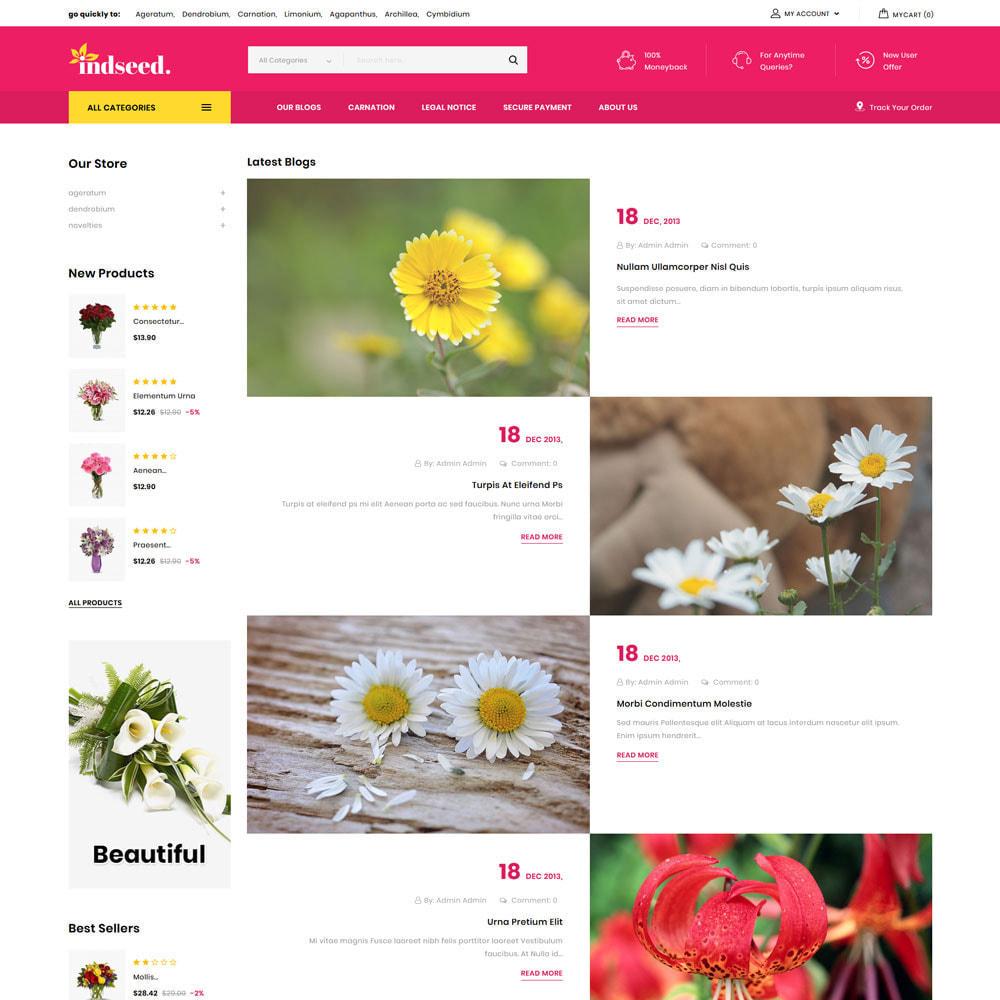 theme - Regalos, Flores y Celebraciones - Indseed - La tienda de ramo online - 9