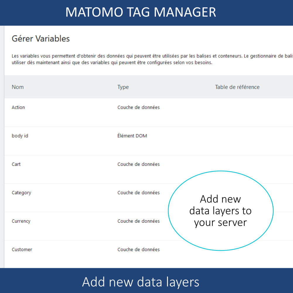 module - Администрация - Matomo tag manager + Cookie manager & banner (GDPR) - 8