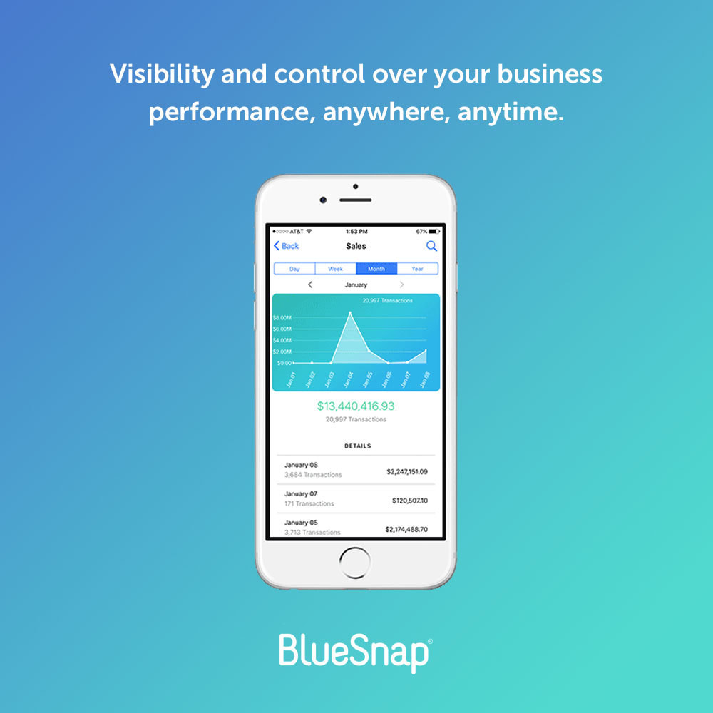 module - Payment by Card or Wallet - BlueSnap All-in-one Global Payment - 3