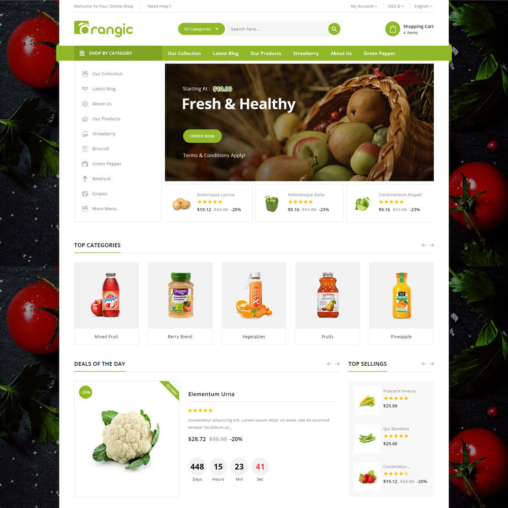theme - Продовольствие и рестораны - Orangic - The Food Store - 6