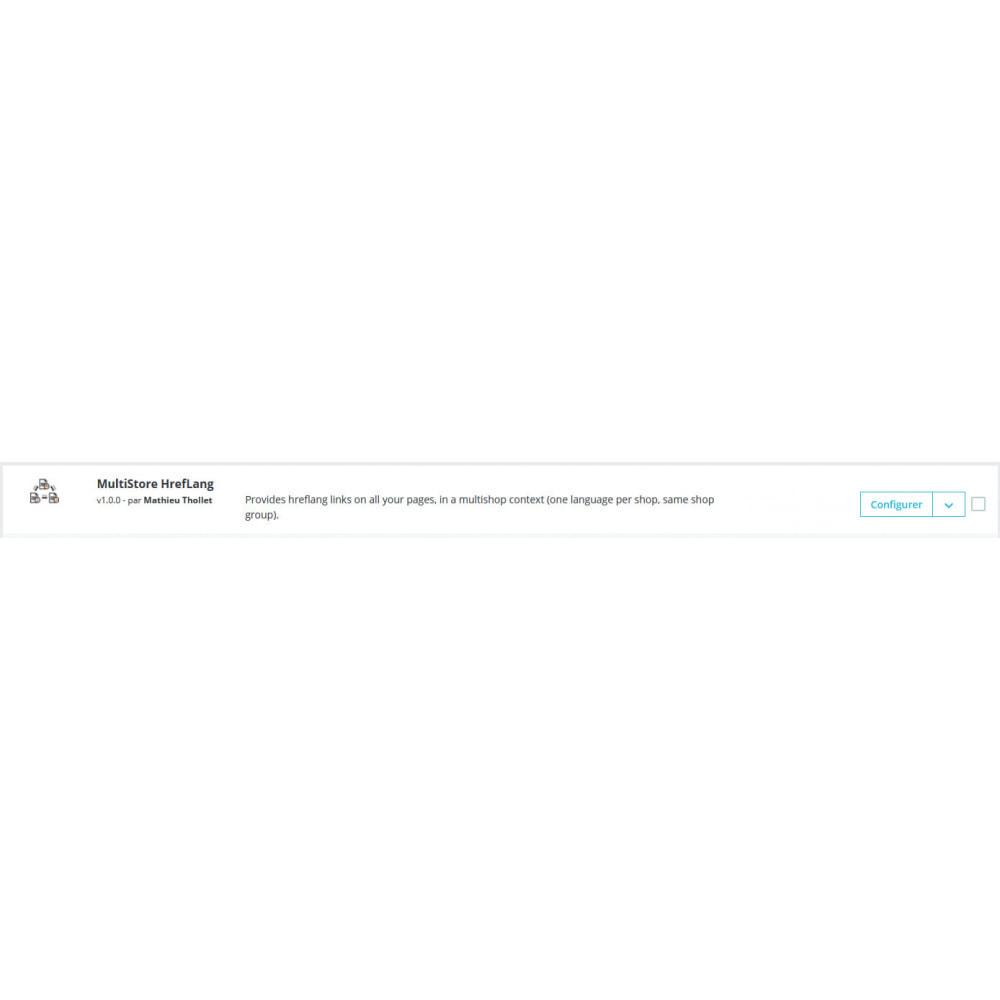 bundle - SEO - Multistore HrefLang and Language Selector - 1