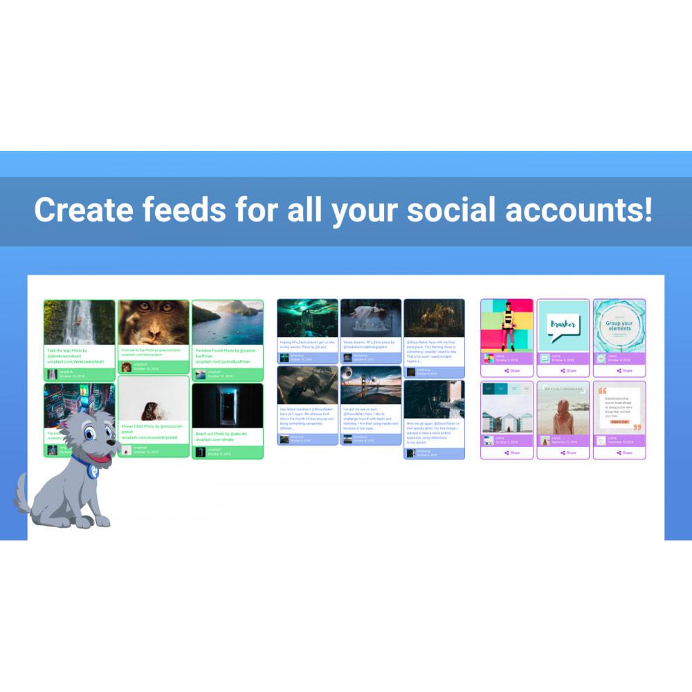 module - Widgety serwisów społecznościowych - POWr Social Feed - 3