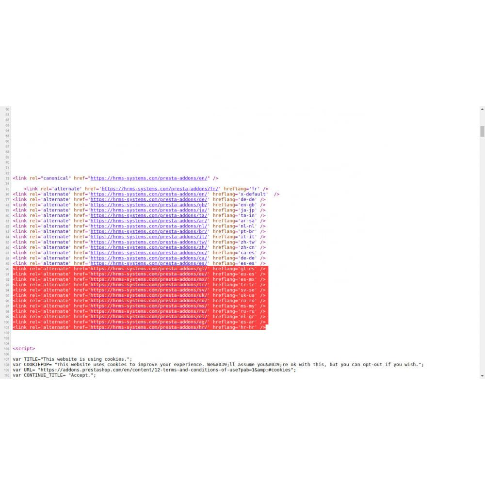 module - Естественная поисковая оптимизация - Hreflang и канонические теги на всех страницах - 4