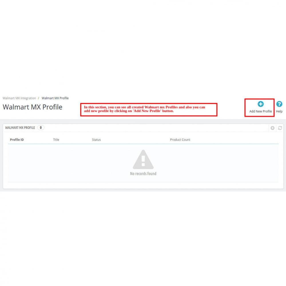 module - Datenabbindungen zu Drittsystemen (CRM, ERP, ...) - Walmart Mexico Integration - 6