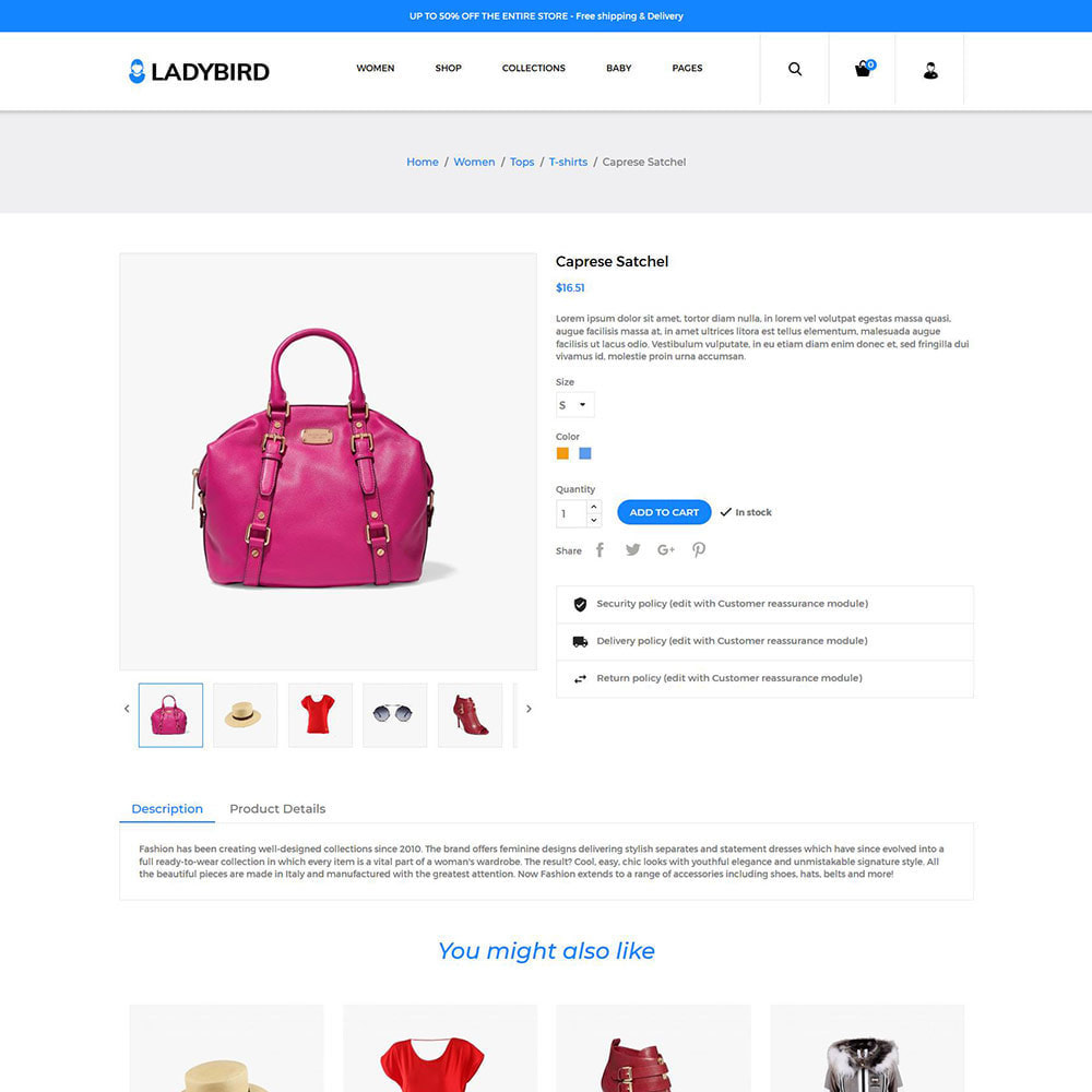 theme - Fashion & Shoes - Fashion Accessories - Bag Perfume Dress Store - 5