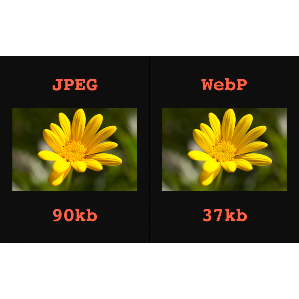 module - Visual Products - Image: WebP, Compress, Zoom, Lazy load, Alt &More - 4