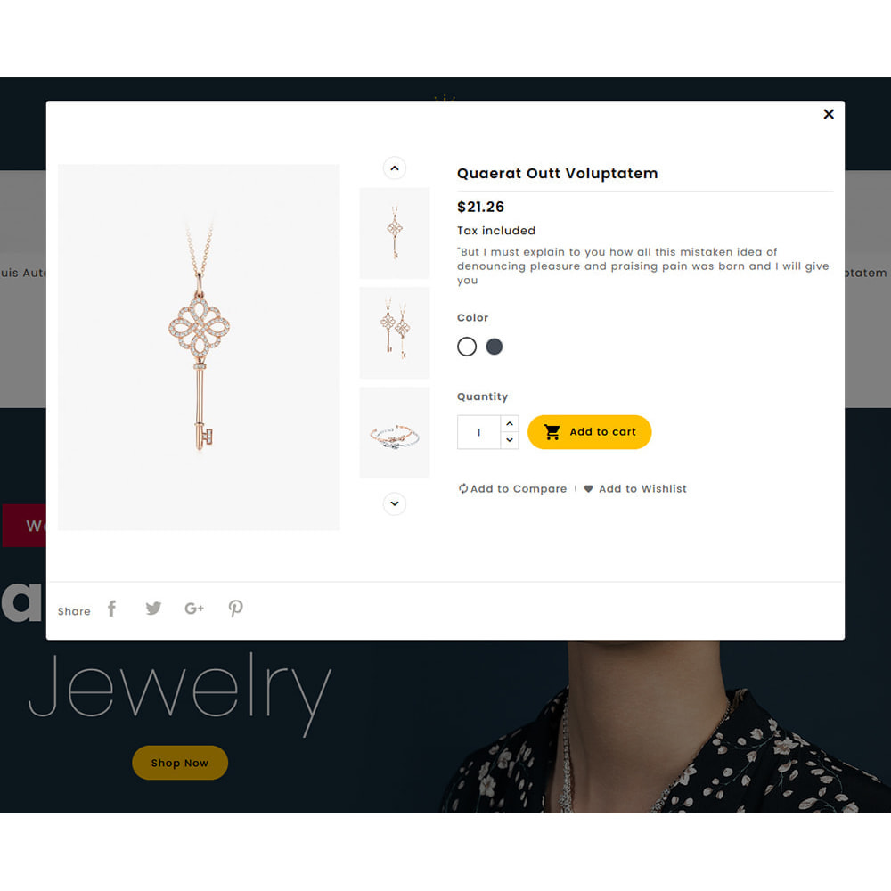 theme - Joyas y Accesorios - Joyeria - Imitation Jewelry & Diamond Shop - 16