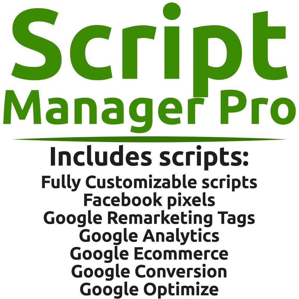 module - Analysen & Statistiken - Script Manager Pro (Customizable Scripts, APIs & GDPR) - 1