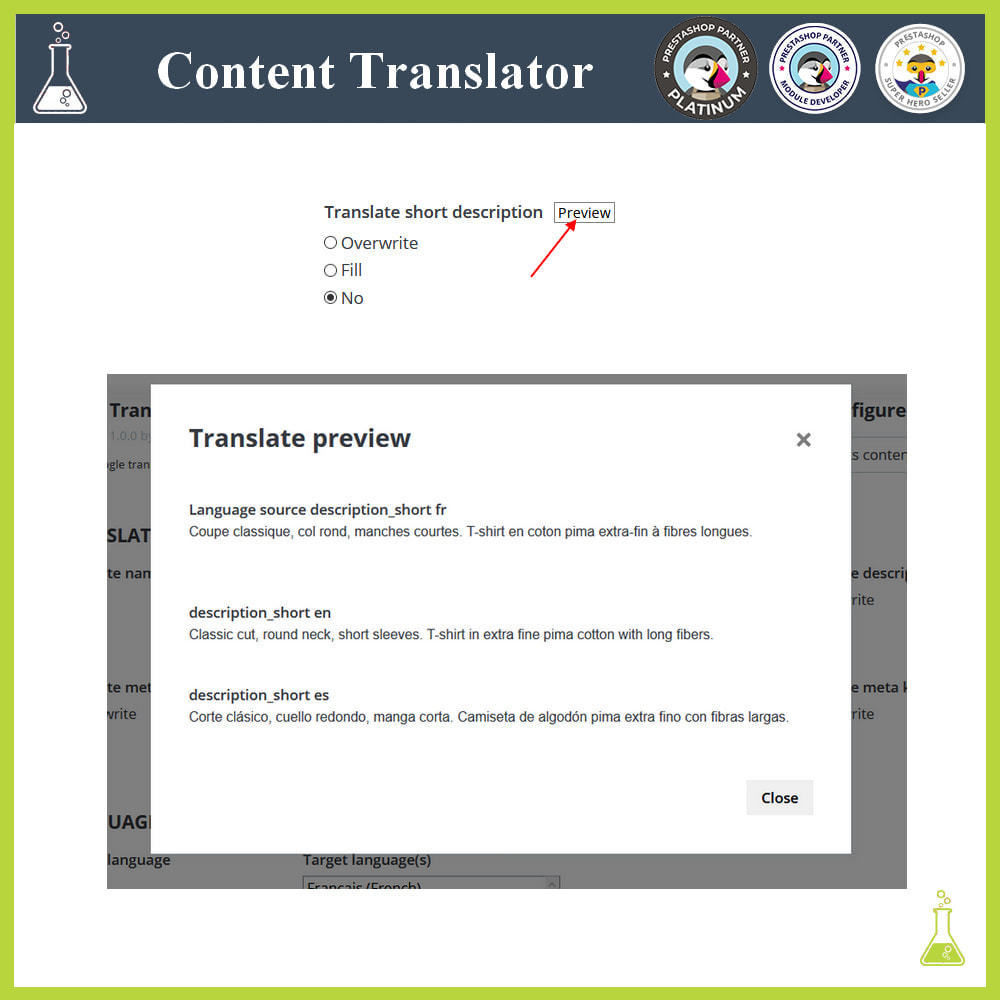 module - Internationalisierung & Lokalisierung - Advanced content translator - 12
