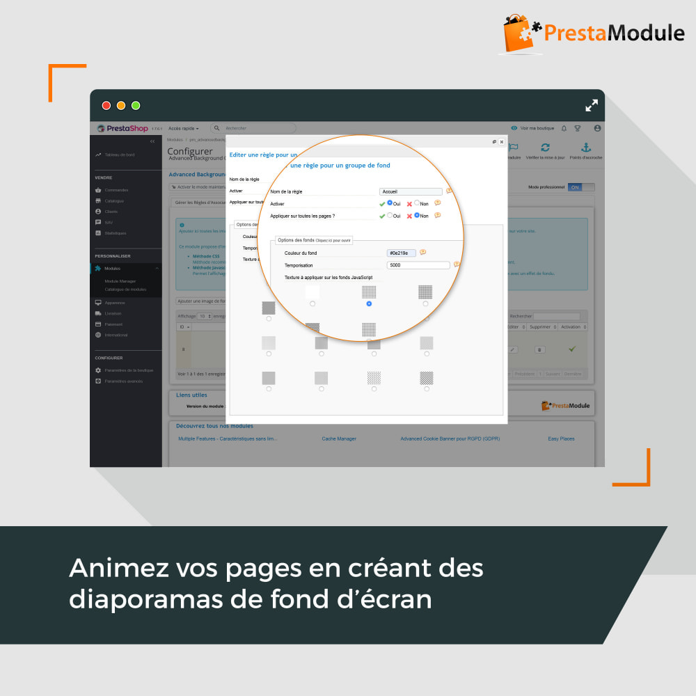 module - Personnalisation de Page - Advanced Background Changer - 4