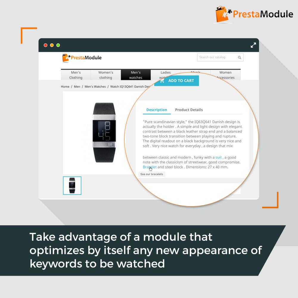 module - SEO (Posicionamiento en buscadores) - SEO Internal Linking PRO - enlaces internos para SEO - 4