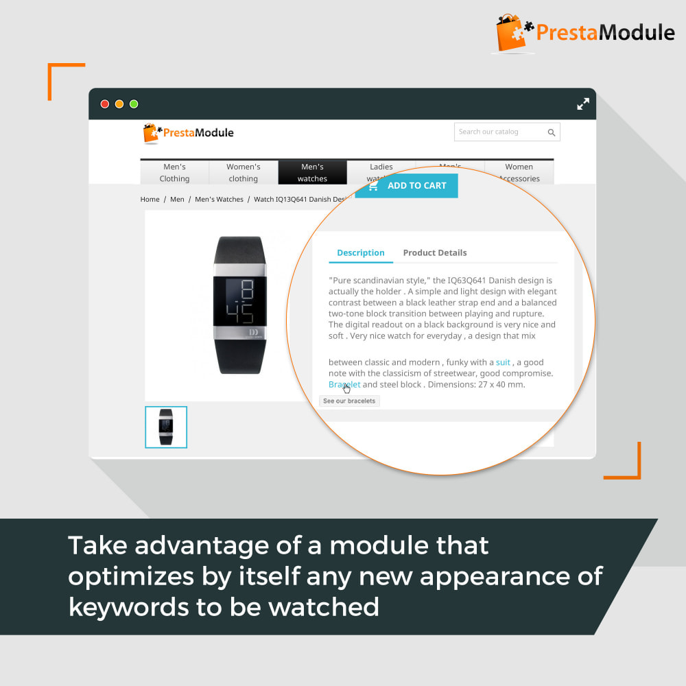 module - SEO - SEO Internal Linking PRO - 4