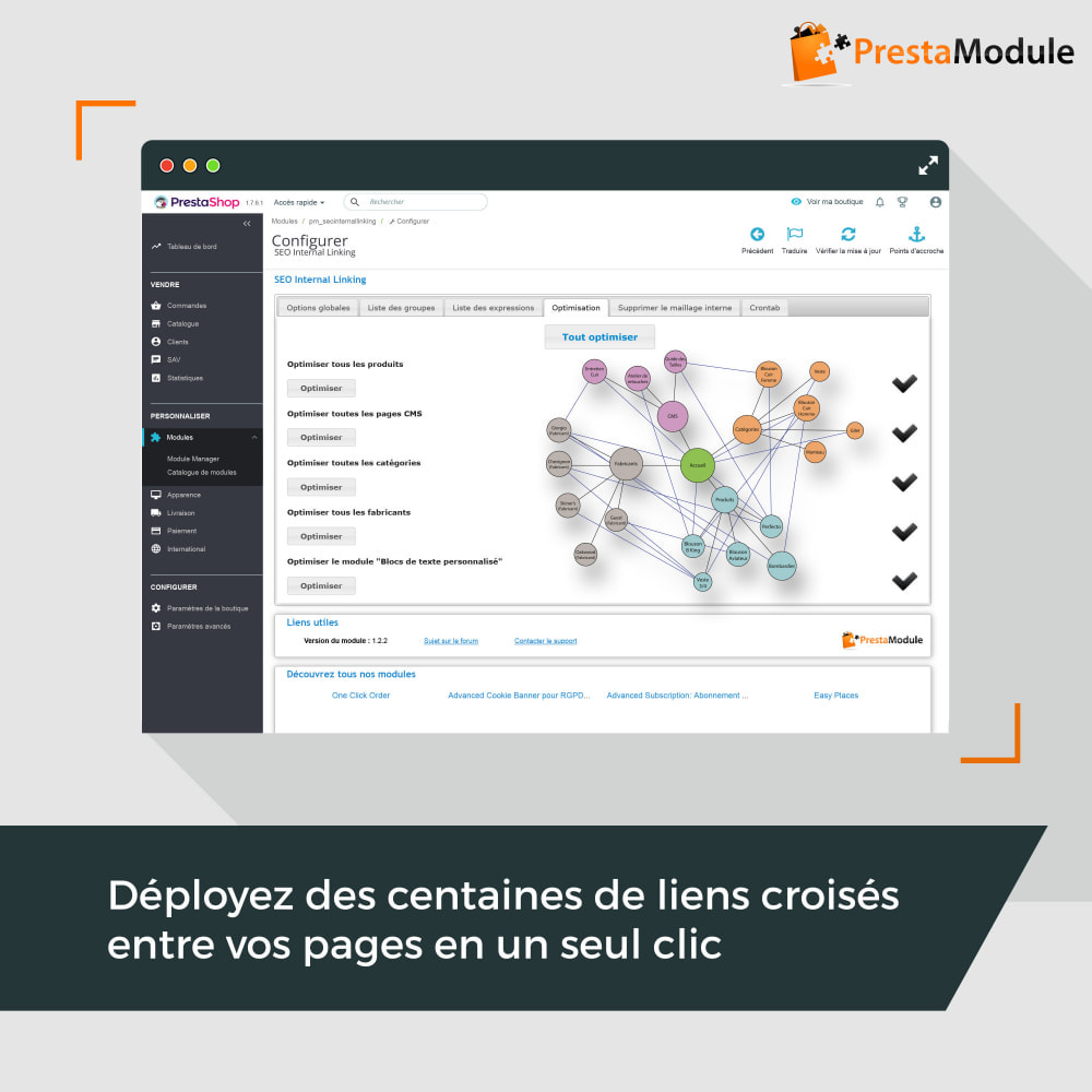 module - SEO (référencement naturel) - SEO Internal Linking PRO - 3