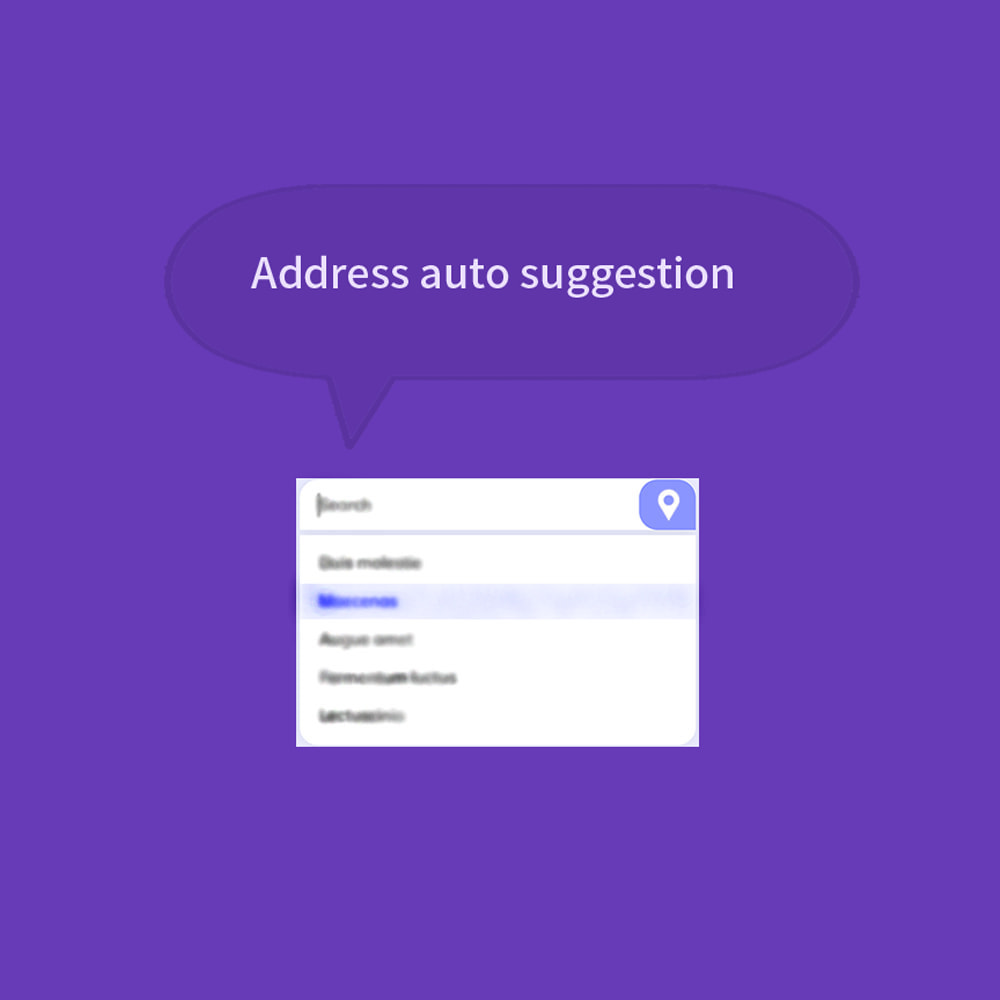 module - Bestelproces - Autocomplete Google Address - 5