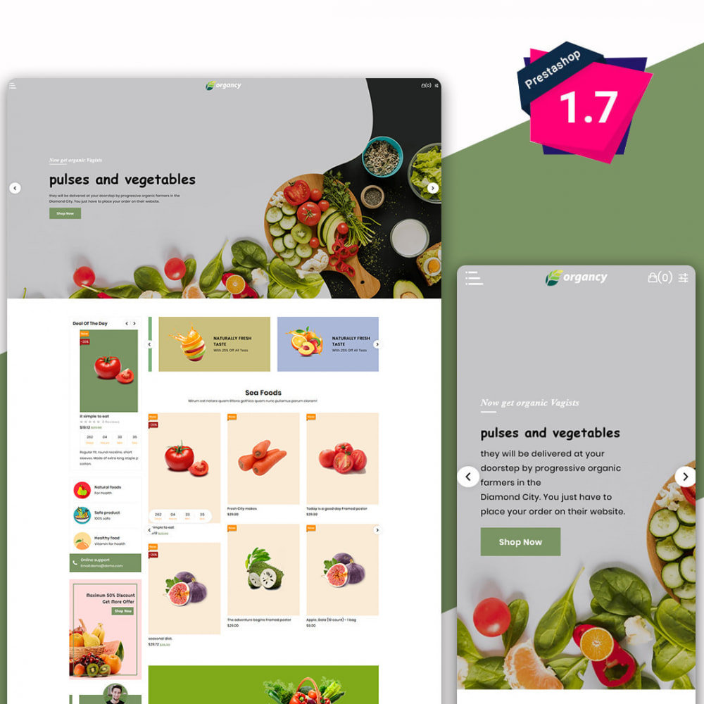 theme - Alimentation & Restauration - Organcy - The Organic & Foods Store - 2