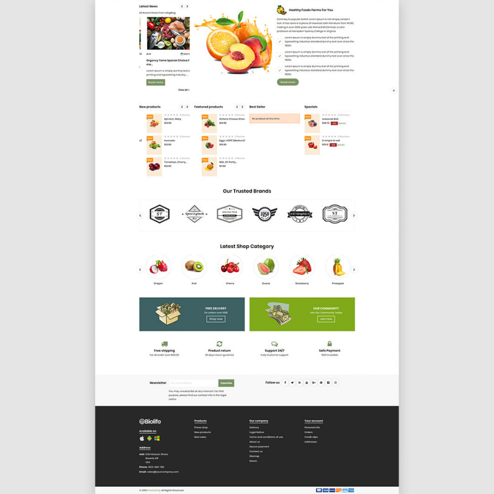 theme - Eten & Restaurant - Organcy - The Organic & Foods Store - 4