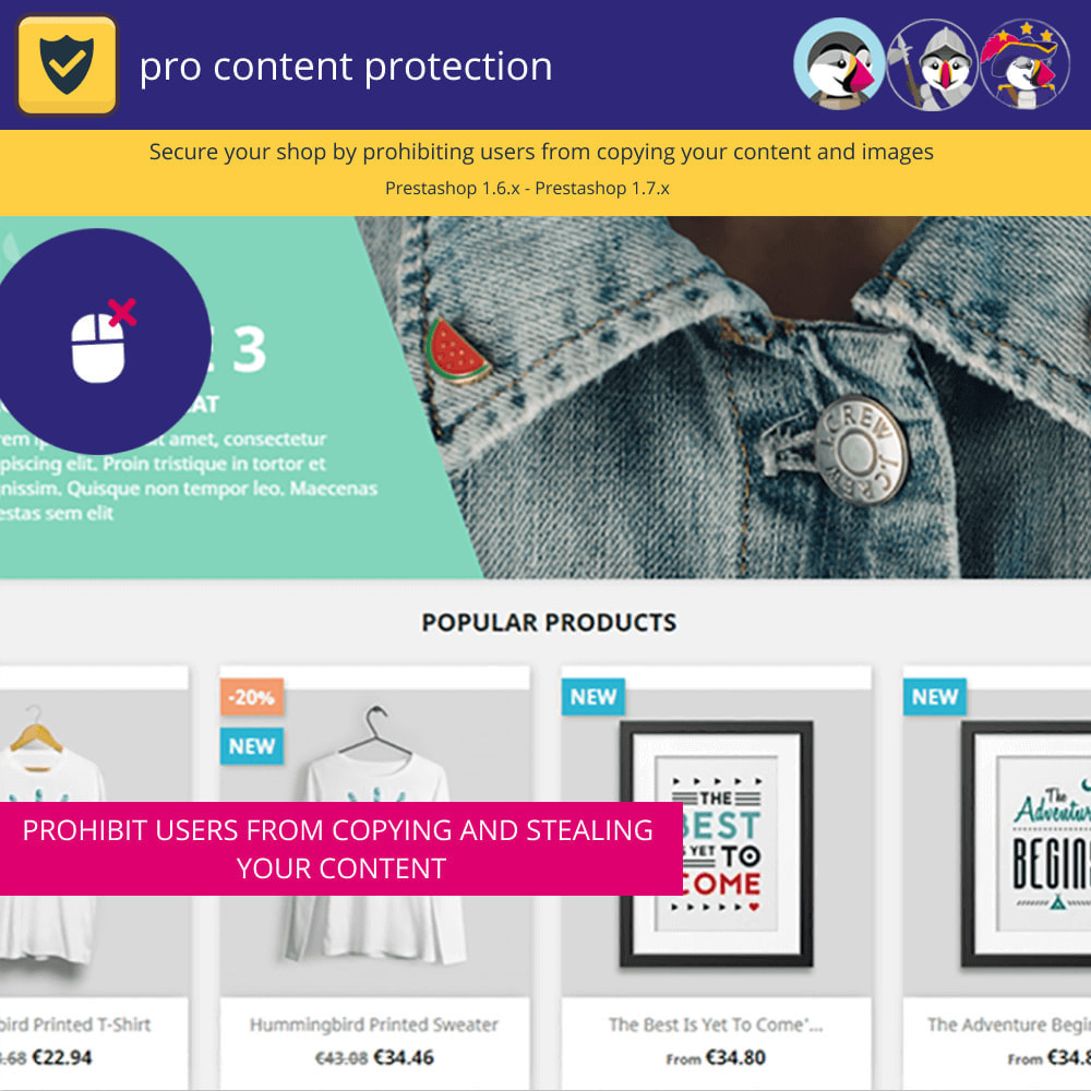 module - Security & Access - Pro Content Protection - Protect Your Content - 2