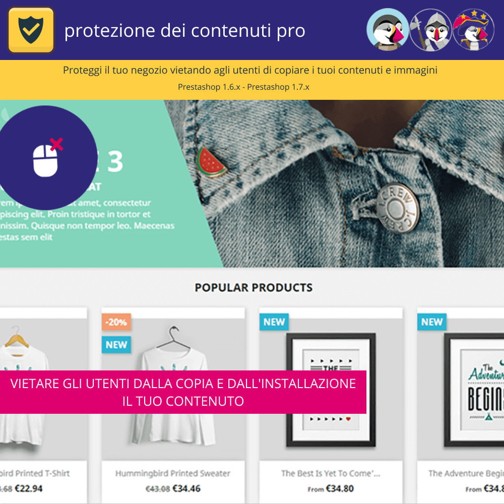 module - Security & Access - Pro Content Protection - Proteggi i tuoi contenuti - 2