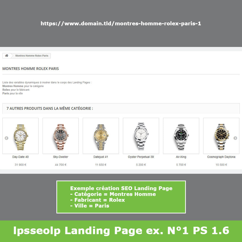 module - SEO (référencement naturel) - SEO Dynamic Landing Pages - 11
